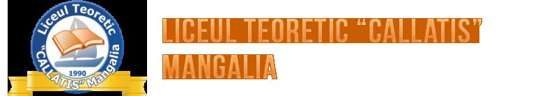"Personalul auxiliar,nedidactic | Liceul Teoretic ""Callatis"" Mangalia"